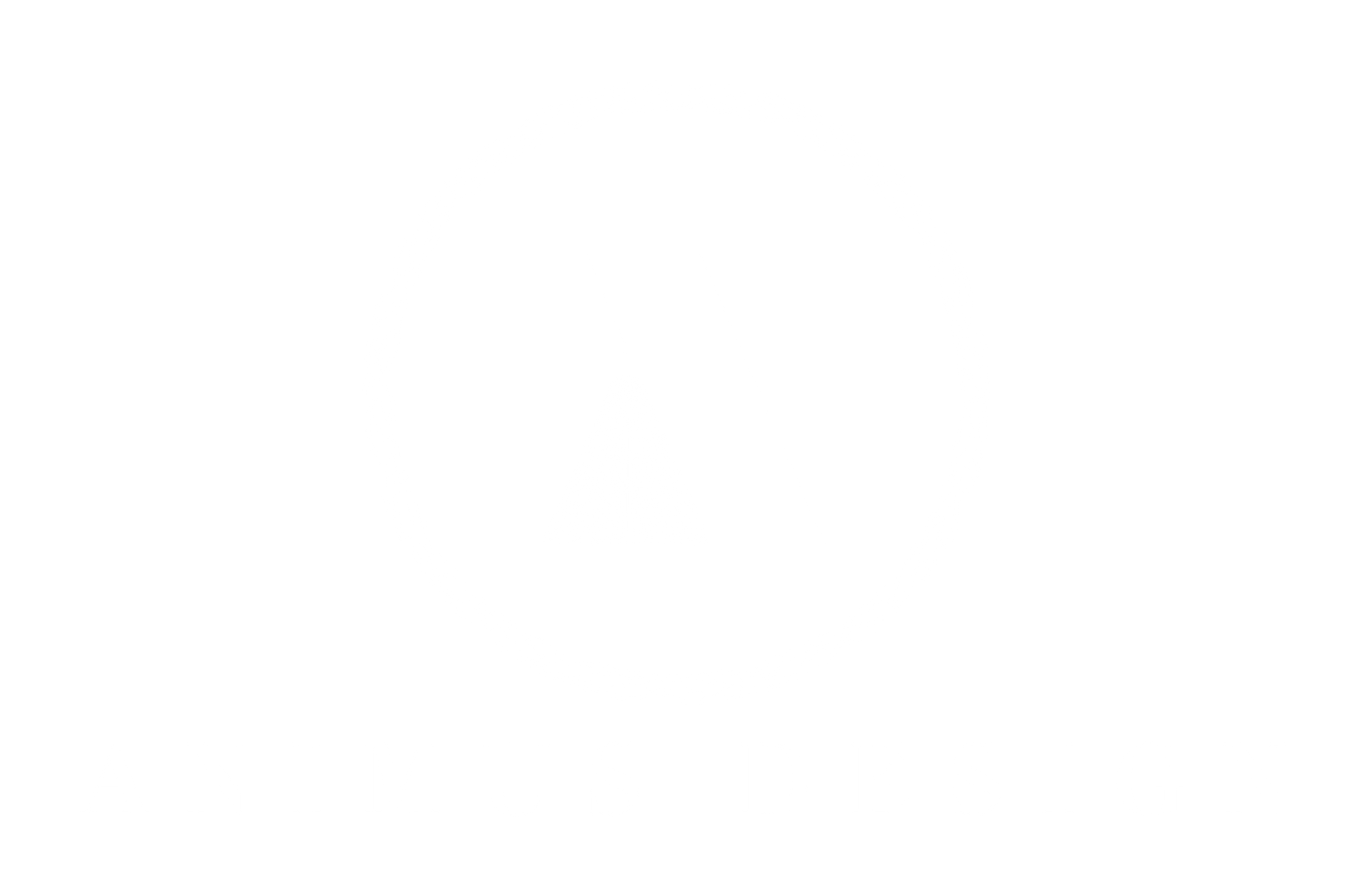 Animus Design
